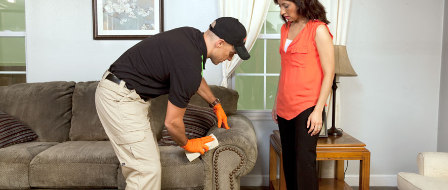 Madison, MS carpet upholstery cleaning